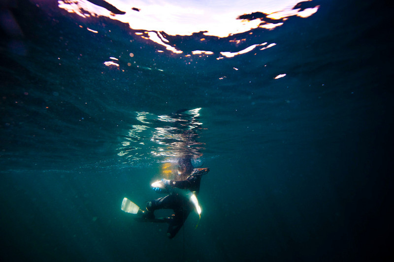 20090420_Underwater_Mexico_0259.jpg