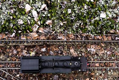 Garden Railroad 2016