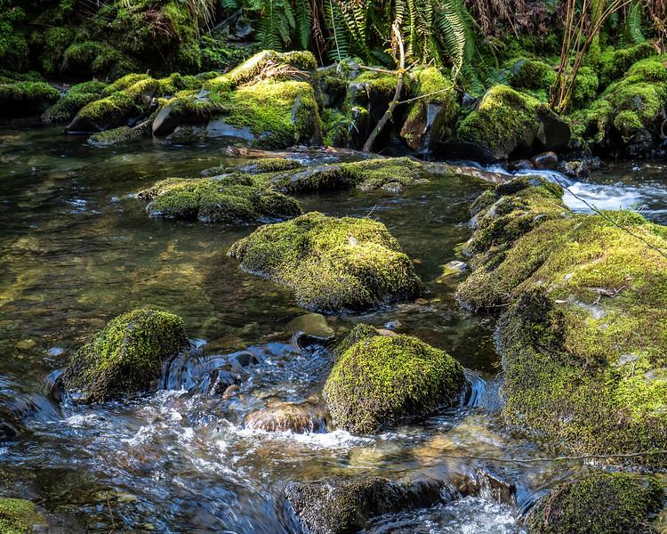 Stocking Creek (9 of 10).jpg
