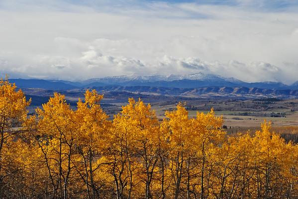 10 2012 Oct 29 Elbow Falls & Wild Horses