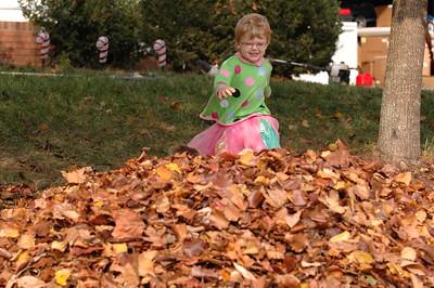 2007-12-09 Leaves
