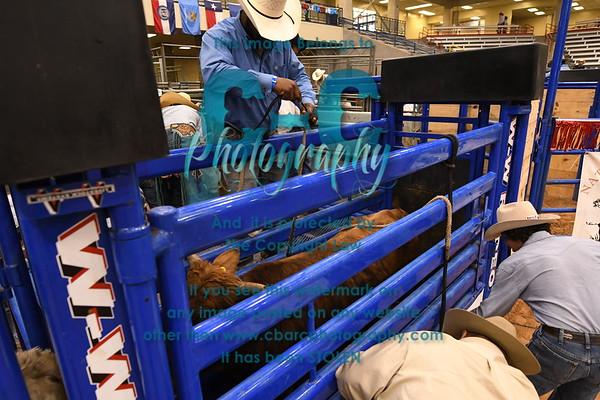 Behind the Chutes NJBRA Finals 2018 Amarillo TX 10/18