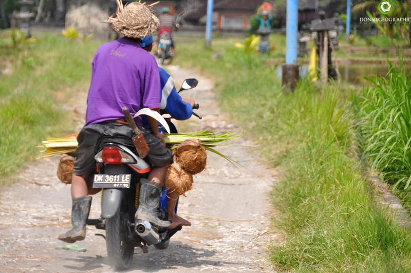 Bali-608.jpg