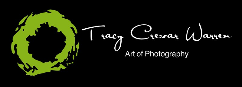 TCW Art of Photography Black Green.jpeg