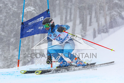 Whistler Cup 2019