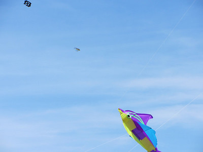 Parma Kite competition 5-12-12