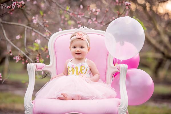 Peach blossoms - Tiffany Nicole