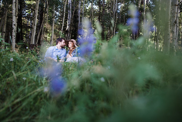 Rodney and Sarah | Aspen Corner Flagstaff Engagement