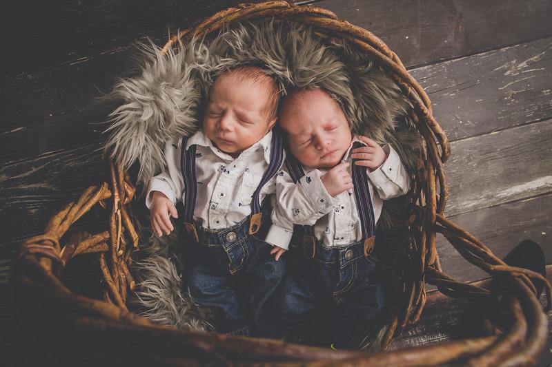 Higgins Twins 2018