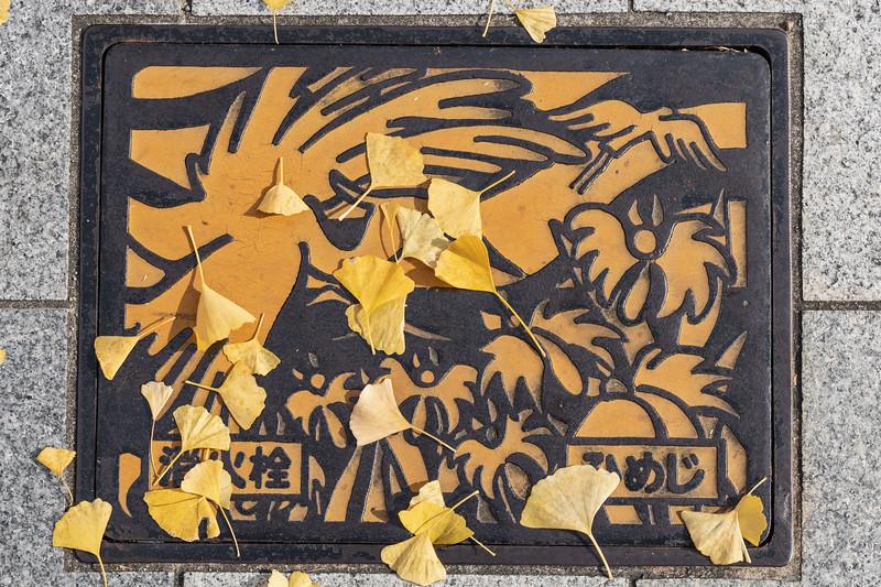 Osaka12012018_078.jpg