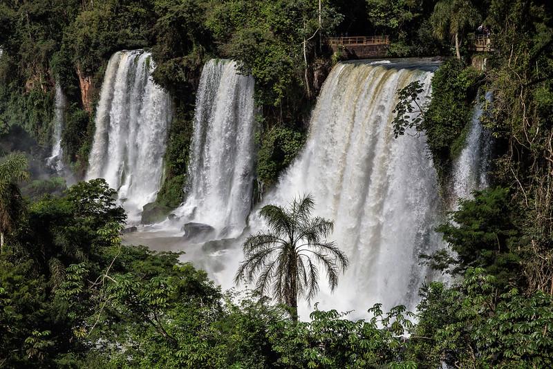 1225_Iguassu Falls__MG_3977.PRINT.jpg