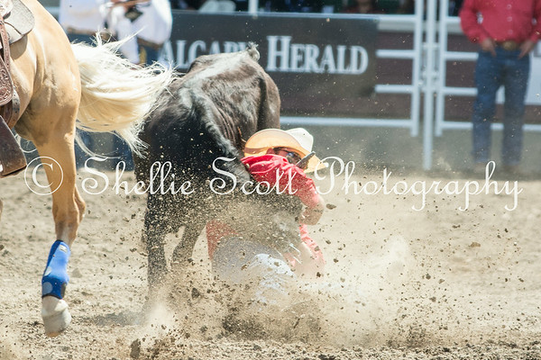 Calgary Stampede - Day 4