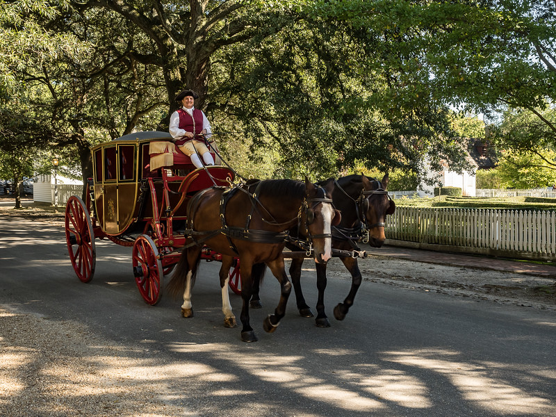 18th Century Colonial Carriage and Horses