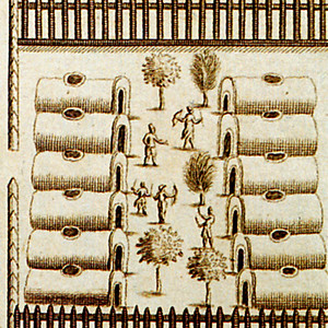 Haudenosaunee Iroquois Religion and Politics