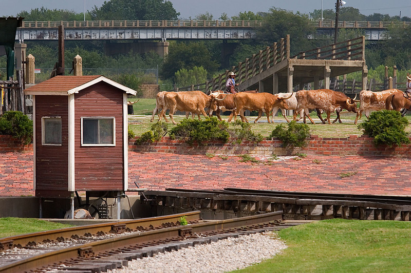 8360_Fort_Worth_Stock_Yards.jpg