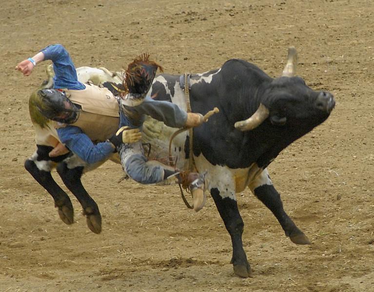 Coombs Ballarama 2008-3-106A.jpg