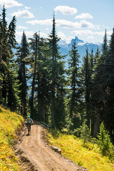 Mountain biking near Whistler, British Columbia, Lord of the Squirles, Sproat mountain.