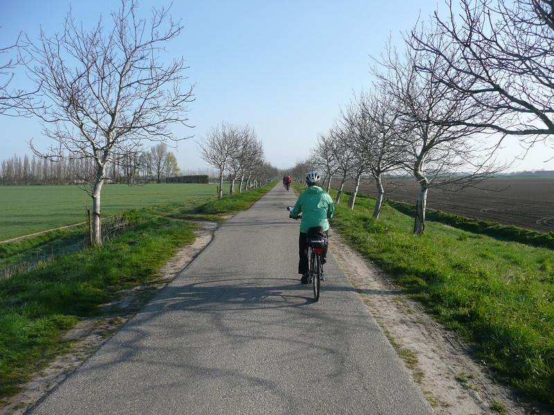 Holland 2008 II 176.JPG