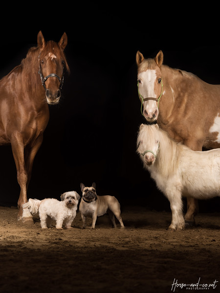 La family 2.jpg