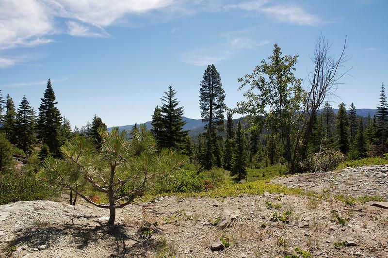 Wildcat Creek area
