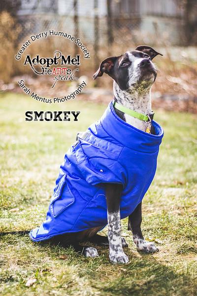 Smokey3.jpg