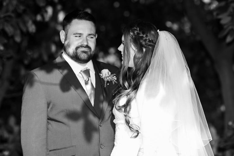 Wedding_Adam_Katie_Fisher_reid_rooms_bensavellphotography-0445.jpg