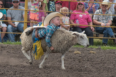 Mutton Busting Saturday 2016