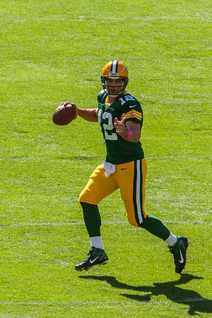 Packers vs. Lions 2013