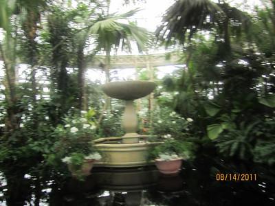 2011- Botanical Gardens Flamenco Concert w/Lisa