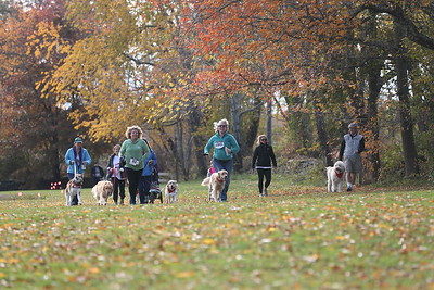 Aquidneck Land Trust Race November 5, 2016