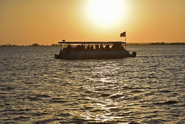 Jekyll Island Boat Tours + Dolphin + Nature