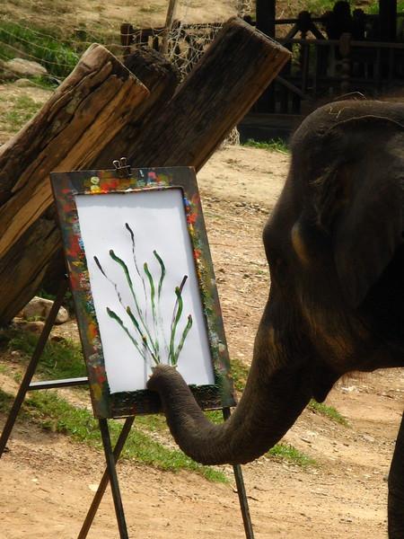 Elephant painting at Mae Sa Elephant Camp.