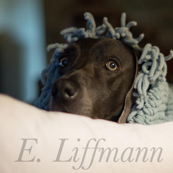 http://ericliffmann.smugmug.com/photos/i-Gv4Sg9g/0/L/i-Gv4Sg9g-L.jpg