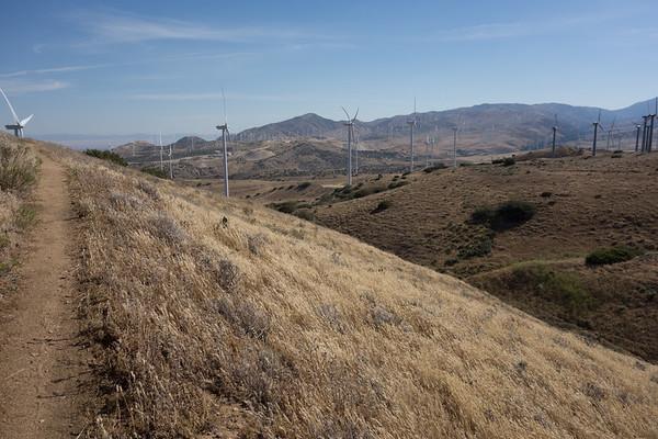 PCT 2016 - California 2