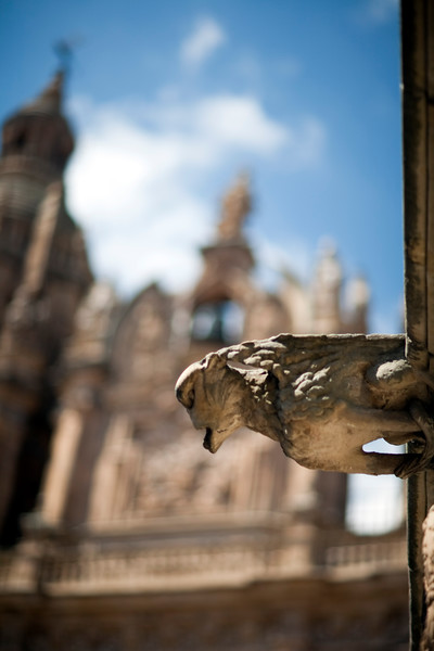 Gargoyle, House of the Shells (with the Clergy church on the background), town of Salamanca, autonomous community of Castilla and Leon, Spain