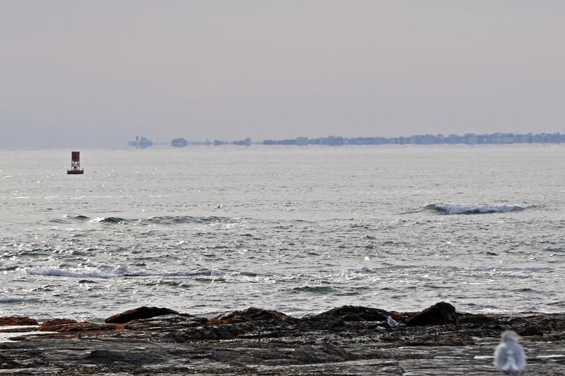 Ocean Drive 07.jpg