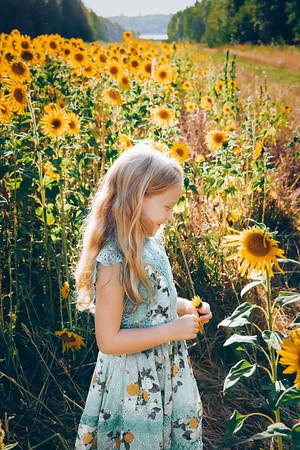 Badavinac Sunflower Kiddos