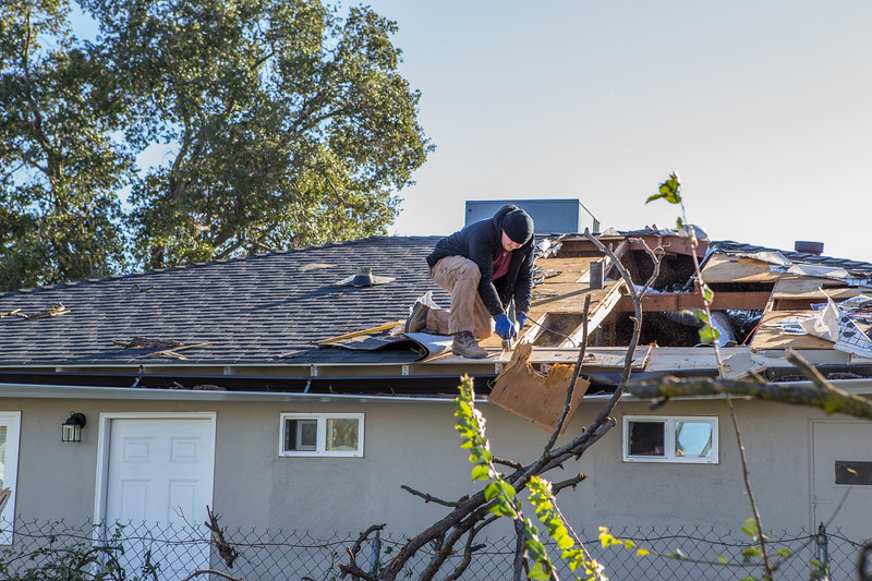 5671 Wallace Ave - Tree 1030am 12 16 2017 Extremly Windy Conditions-115.jpg