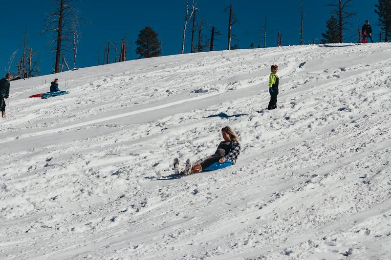 snowMLK-2508.jpg