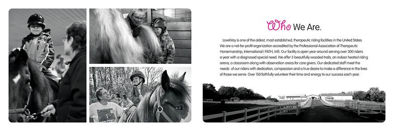 LWI 0051 Brochure2.jpg