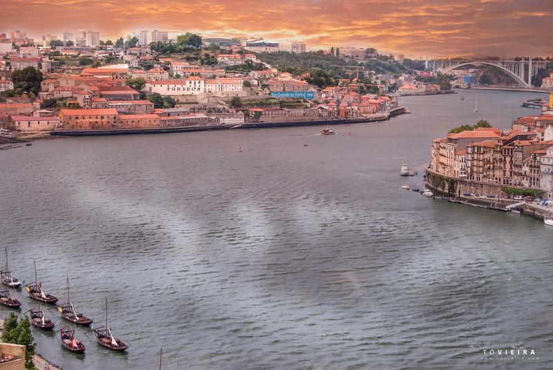 Douro . Ponte da Arrabida