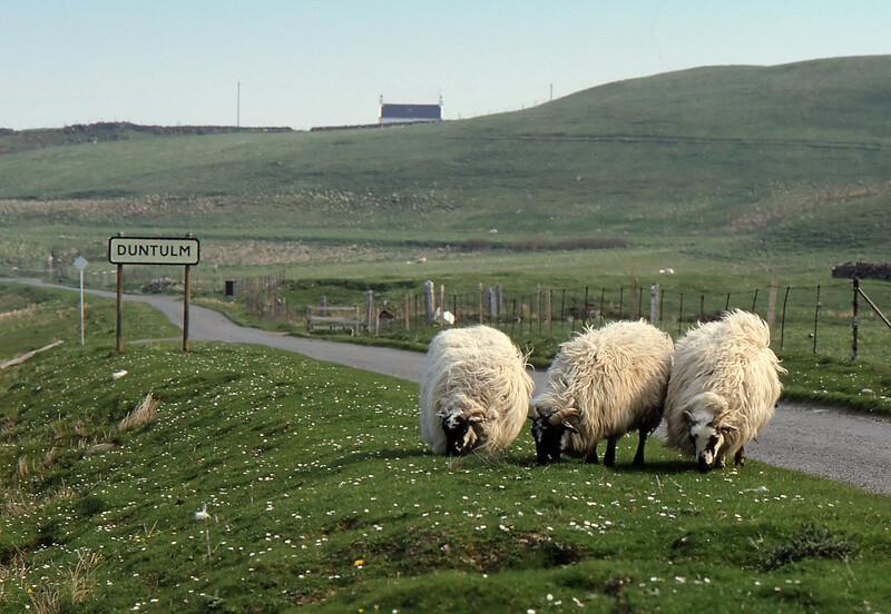 Duntulm Welcoming Committee - Duntulm, Isle of Skye, Scotland, UK - May 20, 1989