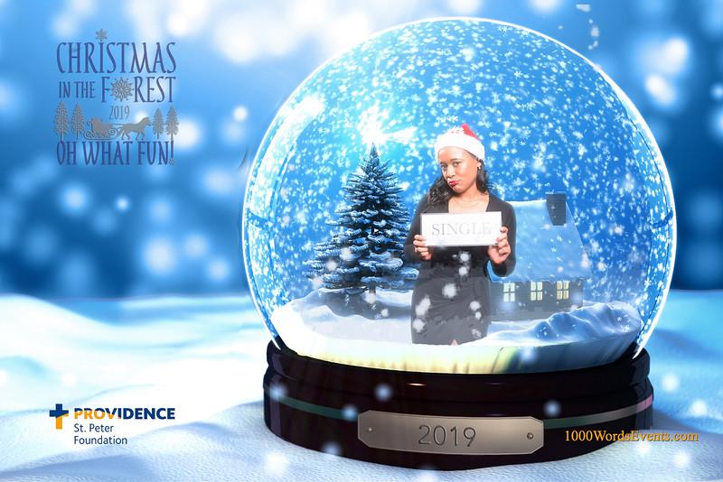 Providence Christmas Forest-114.jpg