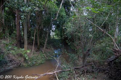 Jackpot Creek* (not real name)