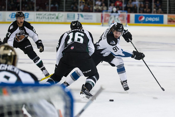 Idaho Steelheads 2016-2017
