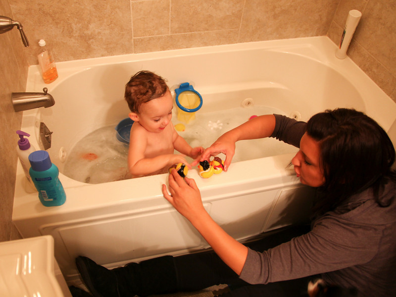 Jill and Jenna give Hunter a bath at my parent's house in Oak Forest on November 24, 2010.  (Jay Grabiec)