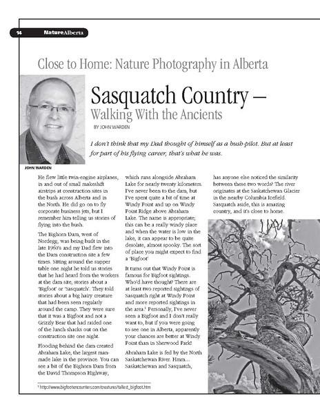 Sasquatch Country_1.jpg