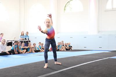 Step It Up Gymnastics 31st March 2019