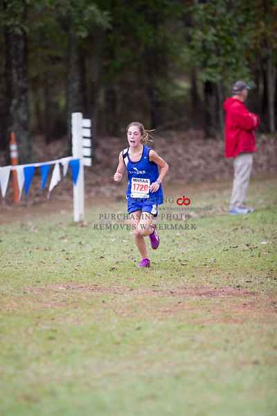 MHSAA State Cross Country 3A,5A Boys/Girls