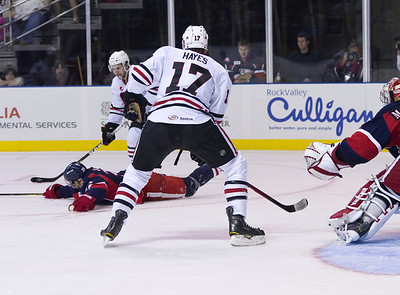 IceHogs 2011-2012